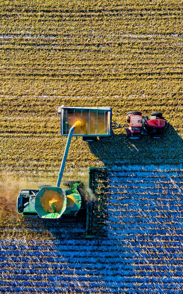 Business-Applications-agriculture_375602